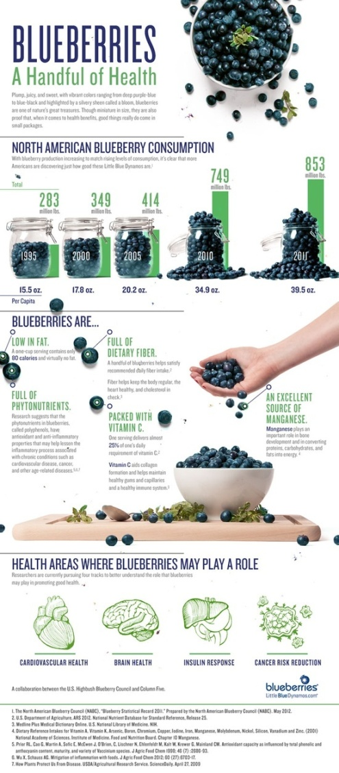 The Impact of Blueberries.